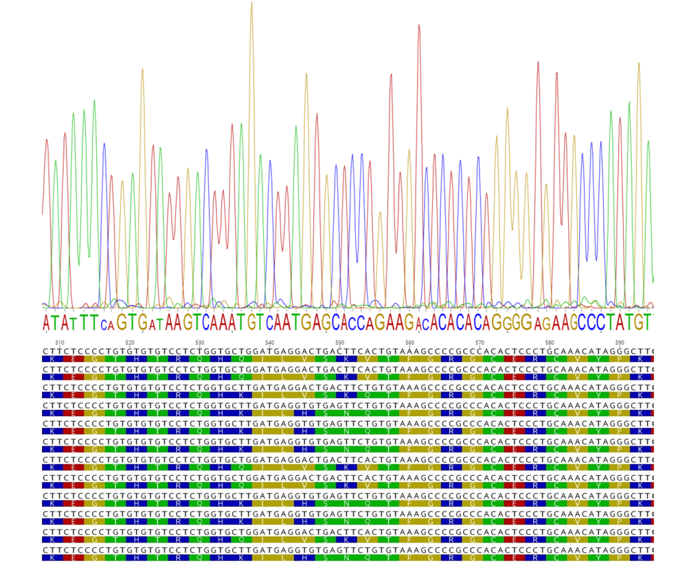 "<span style=""font-family: Cambria;"">Sequencing the Prdm9 Exon coding for the  C2H2-zinc-finger domain can reveal the underlying population diversity in the positions that are relevant for DNA binding. <br /></span>"