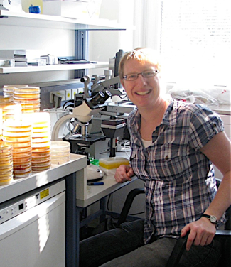 Dr. Primrose Boynton, evolutionary biologist and yeast expert, will finish our lecture series this winter. The researcher will report on the evolution of yeast in the forest. She will focus in particular on the variety and diversity of yeast in the soil of Schleswig Holstein.All public evening lectures are aimed at people interested in research, expertise is not required. They are held in German.