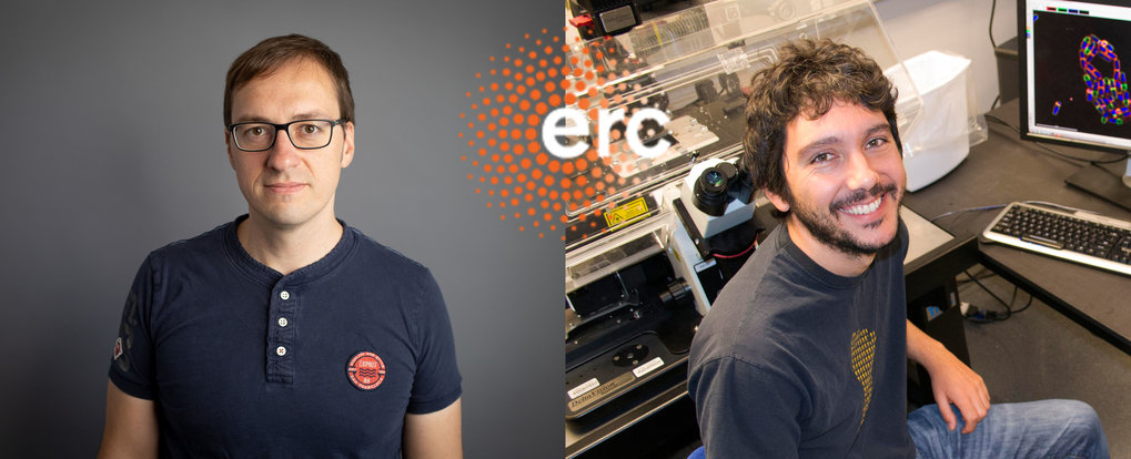 Dr. Christian Hilbe (to the left) und Dr. Javier Lopez Garrido (to the right) have each been awarded an ERC Starting Grant for their research at the Max Planck Institute for Evolutionary Biology in Plön.