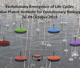 Workshop on Evolutionary Emergence of Life Cycles